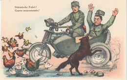 """Schweiz Suisse: """"Stürmische Fahrt"""" (Humor-Karte) Seitenwagen-Krad, Militär, Hund, Hühner & Enten Blanko - Non Circulé - Motos"""