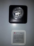 AÑO 1985. 1 DOLLAR PLATA.  PESO 23,33 GR - Canada