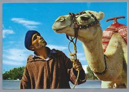 MA.- MAROC. TIPIQUE. L'homme Et Le Chameau. The Man And The Camel. De Man Met Kameel. Ongelopen. - Marokko