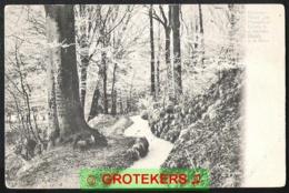 MOOK Beekweg Bij Hotel De Plasmolen 1904 - Nederland