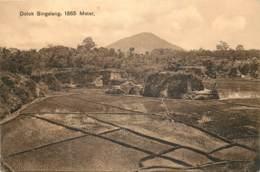 Indonesie - Dolok Singalang , 1865 Meter - Indonésie