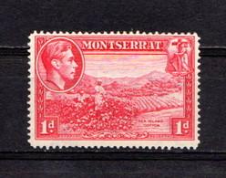 MONTSERRAT    1938    1d  Carmine   Perf  14    MNH - Montserrat