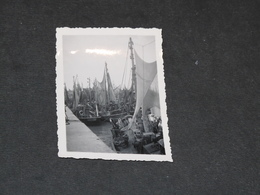 OSTENDE - 22/7/47 - LE PORT DE PECHE - Bateaux