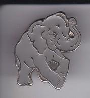 PIN DE UN ELEFANTE  (ELEPHANT) - Animales