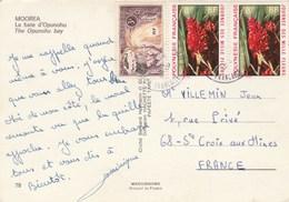 Lettre De - Polynésie Française