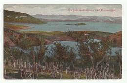 Norway - Fra Jansvandsskoven Ved Hammerfest - Cpa 1920s - Norwegen