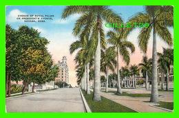 HABANA, CUBA - AVENUE OF ROYAL PALMS OR PRESIDENT'S AVENUE, HAVANA - PUB. BY ROBERTS & CO - - Cuba