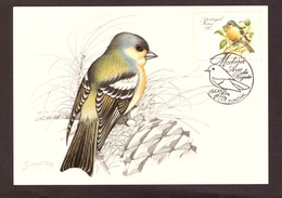 Portugal 1988 - Birds Of Madeira 80$00 2° Grupo Postcard   Subscrito 1°dia - 1910-... Republic