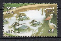 EGYPTE - EGYPT - 2016 - PELICAN - OISEAUX - BIRDS - GIZA ZOO - 125 YEARS - 125 ANS - - Egypt