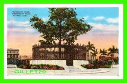 HABANA, CUBA - FRATERNITY TREE, FRATERNITY PARK, HAVANA - PUB. BY ROBERTS & CO - - Cuba