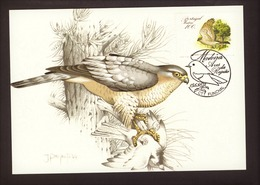 Portugal 1988 - Birds Of Madeira 100$00 2° Grupo Postcard   Subscrito 1°dia - 1910-... Republic