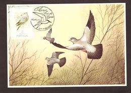 Portugal 1988 - Birds Of Açores 27$00  Postcard   Subscrito 1°dia - 1910-... Republic