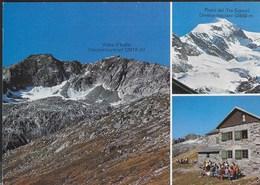 RIFUGIO TRIDENTINA - VALLE AURINA - TIMBRO DEL RIFUGIO - VIAGGIATA 1988 - Alpinisme