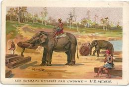 """Chromos Chicorée Extra Beriot Lille A La Belle Jardinière """"Les Animaux Utilisés Par L'Homme"""" L'Eléphant - Té & Café"""