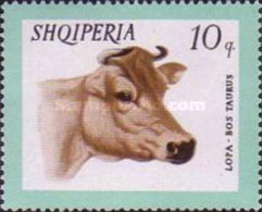USED STAMPS Albania - Domestic Animals  -1966 - Albania