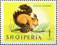 USED STAMPS Albania - Animals - Mammals  -1964 - Albanie