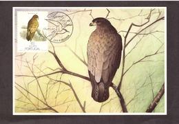 Portugal 1988 - Birds Of Açores 100$00  Postcard   Subscrito 1°dia - 1910-... Republic