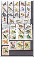 Aitutaki 1981, Postfris MNH, Birds - Aitutaki