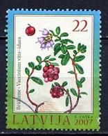 Lettonie - Lettland - Latvia 2007 Y&T N°684 - Michel N°707 (o) - 22s Airelles Rouges - Lituanie