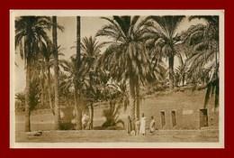 Laghouat * Dans Le Chemin De Ronde    (scan Recto Et Verso ) - Laghouat