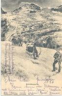 Eigergletscher - Schlittenpartie              1910 - BE Berne