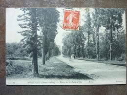 MONTIGNY  Route De La Patte D'Oie   TBE - Montigny Le Bretonneux
