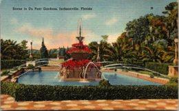 Florida Jacksonville Scene In Du Pont Gardens