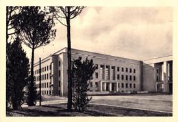 ROMA : CITTÀ UNIVERSITARIA - CLINICA ORTOPEDICA - ANNÉE / YEAR ~ 1935 - '937 (aa854) - Enseignement, Ecoles Et Universités