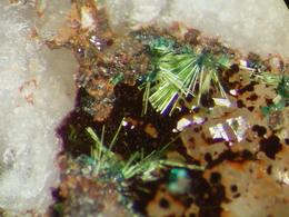 * AGARDITE-(Nd) Xls, Silberbrünnle Mine, Gengenbach, Schwarzwald, BRD * A83 - Minéraux
