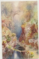 S7539 - Lydford Gorge - Engeland