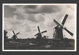 Hollands Molenlandschap - Fotokaart - Molen / Mill / Moulin - Nederland