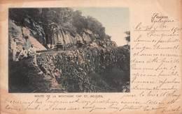 CPA ROUTE DE LA MONTAGNE CAP ST JACQUES - Viêt-Nam
