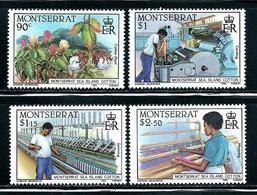 "Montserrat      ""Cotton Industry""      Set    SC# 569-72   MNH** - Montserrat"
