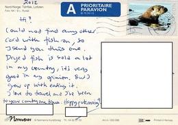 24H : Norway Seal Stamp Used On Dried Fish Postcard - Norway