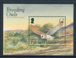 Falkland Inseln MiNr. Bl 31 Postfrisch MNH Eulen (Vög2811 - Falkland