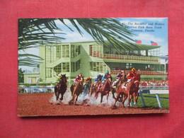 Sunshine Park Race Track Oldsmar  Fl     Ref 3233 - Chevaux