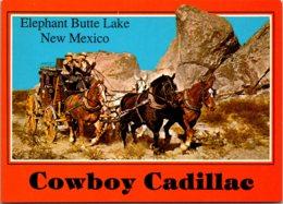 New Mexico Elephant Butte Lake Cowboy Cadillac Stagecoach - Etats-Unis