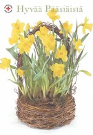 Easter Flowers - Fleurs - Bloemen - Blumen - Fiori - Flores - Red Cross 2005 - Posti Suomi Finland - Postage Payed - Finlande