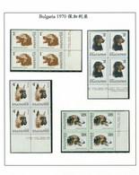 Bulgaria 1970 Dog Chien 4 Block MNH 8V - Bulgarien