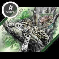 Niger, 2014. [nig14207] Wild Cats (m\s+s\s) - Raubkatzen