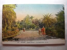 Carte Postale Algérie - Alger - Jardin D'Essai - Le Rond Point ( Petit Format Couleur Non Circulée ) - Benin