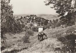 C. P. - PHOTO - ASPREMONT - VUE D'ENSEMBLE - BM58 - ANE - - Autres Communes