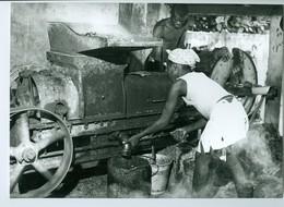 Photo Bénin. Zagnado, Presse Mécanique Pour écraser Les Noix De Palmier  1980. Photo Du Père Gust Beeckmans. - Afrika