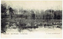 WESTMALLE - Malle - Het Witbosch - Le Bois Blanc - Malle
