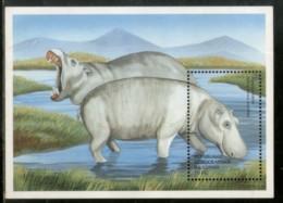 Congo Zaire 2000 Hippopotamus Wildlife Animal Fauna Sc 1515 M/s MNH # 13407 - Democratic Republic Of Congo (1997 - ...)