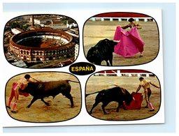 Corrida - Toros - Typique Course De Taureaux - Espana - Corrida