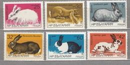 BULGARIA 1986 Fauna Animals Rabbits MNH(**) Mi 3447-3452 #24120 - Timbres