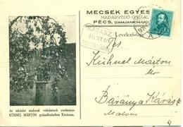 Hongrie Hungary 1934 Postcard Publicité Arbre Fruitier Perry Pear Tree Poirier Baranya - Brieven En Documenten