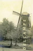 SINT-GILLIS-bij-DENDERMONDE (O.Vl.) - Molen/moulin - Zeer Zeldzame Opname Van De Zwijvekemolen Ca. 1900 In De Winter - Dendermonde