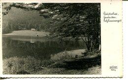 007496  Laudachsee, Gmunden - Gmunden
